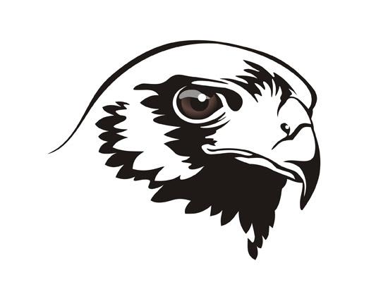 Name Für Männlichen Falken