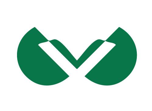 Initial V