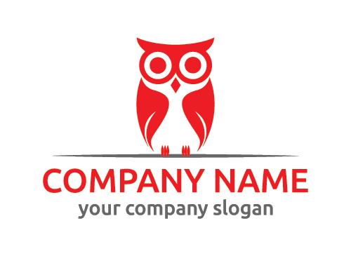 Logo eule, vögel, ausbildung, schule, Weisheit