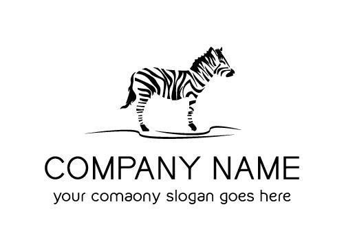 zebra, afrika, tier, schwarzes, logo