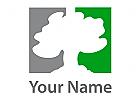 weißer Baum vor erst grauem und dann grünem Hintergrund