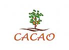 Cacao Tree Logo