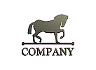 Pferd, Hengst, Ranch, Sport, Gold