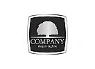 Logo, �kologie, Baum, Recht, Rechtsanwalt, Schutz, Stamm, Gericht, Justiz, Organisationen, NGOs