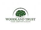 Vertrauen, Holz, Baum, Bank, Finanzen, Investitionen, Management, Recht, Logo