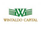Kapital, Capital, Investitionen, flügel, Geld, fliegen, Bank, Rate, Symbol, Buchstabe W