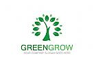 Logo Baum, Blatt, gr�n, Samen, natur