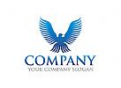 Adler Logo, Investition