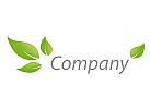 Vier Bl�tter in gr�n Logo