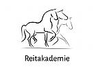 Pferd, Reiten, verschiedene Sportarten