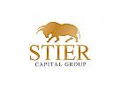 Stier Logo