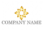 Zeichen, Zeichnung, Symbol, Stern, Blume, Gold, Logo