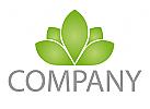 Pflanze, Blätter, Natur Logo