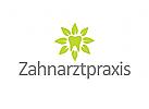 Logo, Zahnarztpraxis, Zahn, Blätter