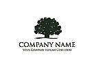 Baum Logo, Finanzen Logo, Vertrauen Logo, Investitionen Logo