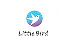 Logo, Vogel, Kolibri, Kreis, Rund, Abstrakt