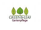 Garten Bäume/Gartenpflege