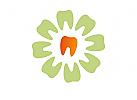 Zähne, Zahnärzte, Zahnarztpraxis, Zahnarzt, Zahn, Logo, Blume