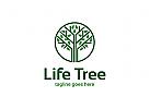 Ö Baum, Kreis, Blatt, Blatter, grun Logo