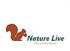 Logo Signet, Eichhörnchen, Squirrel, Waldmarkierung, Natur