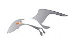 Zeichen, Signet, Logo, Silber, Möwe