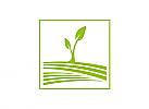 Öko, Natur, Pflanze, Logo