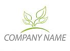 Pflanzen, Baum in grün Logo
