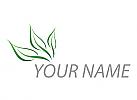 Pflanze, Drei Blätter Logo