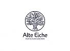 Ö, Zeichen, Eiche, Baum, Signet, Logo, Arztpraxis, Kreislauf, Leben, Life Balance, Natur, Logo