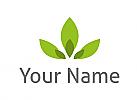 Ökologie, Zweifarbig, Zeichen, Zeichnung, Symbol, Blätter, Pflanze in grün, Logo