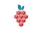 Zeichen, zweifarbig, Signet, Symbol, Pixel, Obst, Beere, Frucht, Logo