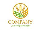 Öko logo, Grün logo, Natur logo, Weizen logo, Brot logo, Ausrüstung logo, Industrie logo, Saatgut logo, Restaurant logo, Geschäft logo, Lebensmittel logo, Bio logo