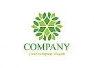Blume, Bunt, Natur, Blatt, Firma, Logo, Grafikdesign