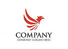 Vogel Logo, Adler Logo, Flügel Logo