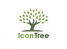Ökologie, Zeichen, zweifarbig, Zeichnung, Baum, Logo