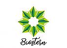 Zeichen, Symbol, Stern, grüner Stern, Biostern, Restaurant